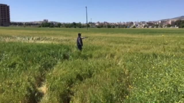 turkish police take security measures after a rocket projectiles, fired from syria, hits a crop field in kilis, turkey on april 22, 2016. - aprile video stock e b–roll