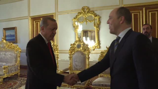 turkish president recep tayyip erdogan meets with head of ukranian parliament in istanbul, turkey on november 20, 2016. - ウクライナ点の映像素材/bロール