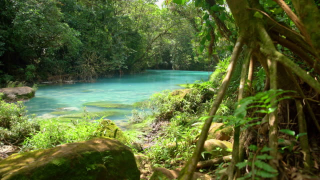 vídeos de stock e filmes b-roll de ds turquoise colored rio celeste - costa rica