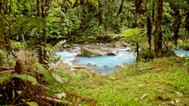 ds turquoise river rio celeste in costa rica - turquoise coloured stock videos & royalty-free footage