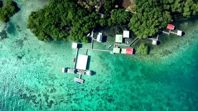 turquoise water surrounding jungle and stilt houses - stilt house stock videos & royalty-free footage