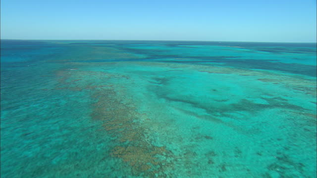 vídeos de stock, filmes e b-roll de aerial turquoise waters above coral reef near eleuthera island, bahamas - mar do caribe