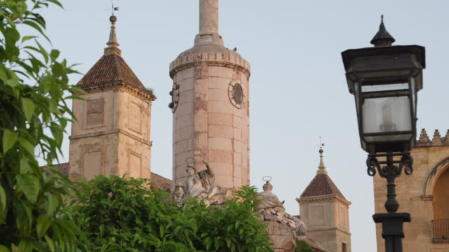 ls turrets of the cathedral-mosque at dawn - gruppo medio di animali video stock e b–roll
