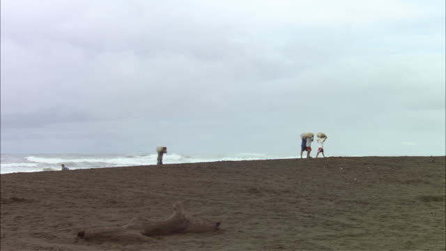 WS Turtle egg hunters  hauling away eggs on Ostional Beach / Guanacaste, Costa Rica