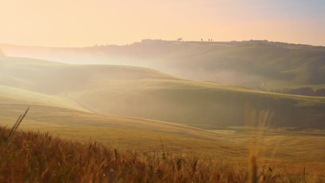 DS Tuscan countryside in fog