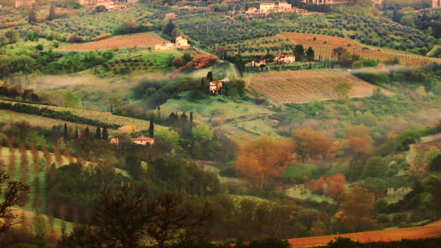 t/l ha pan tuscan countryside with morning mist east of san gimignano, italy - tuscany stock videos & royalty-free footage