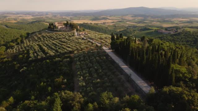 tuscany aerial landscapes - オリーブ油点の映像素材/bロール