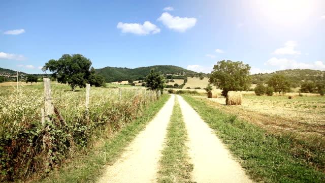 Tuscany Countryside and Vegetationat Summer