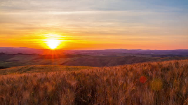 T/L Tuscany countryside at sunset