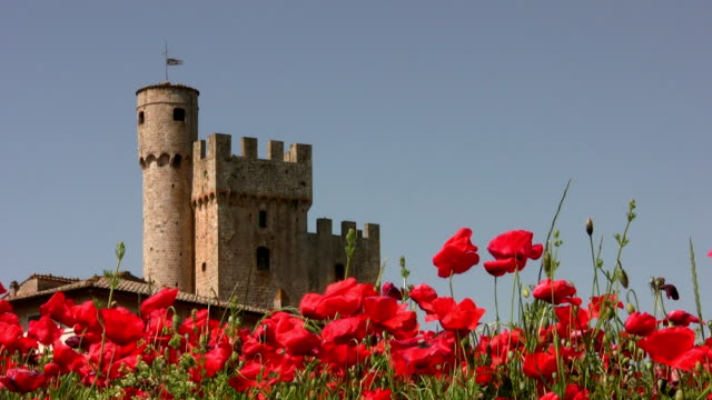 Tuscany, Italy. Castle with Red Poppies in Springtime.