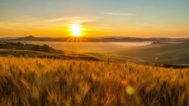 T/L Toscana, paesaggio al tramonto