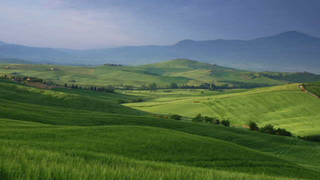 tuscany, typical tuscan landscape of val d'orcia right after sunrise. panning shot - tuscany stock videos & royalty-free footage