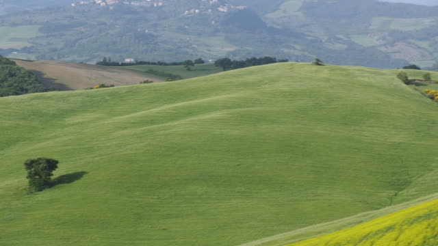 tuscany, yellow fields of flowers and the country house - tuscany stock videos & royalty-free footage