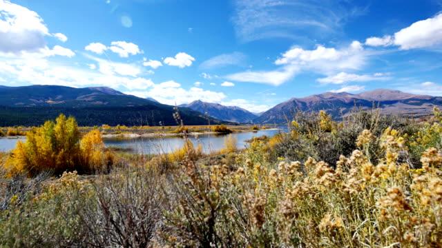 vídeos de stock e filmes b-roll de twin lakes, colorado - choupo tremedor