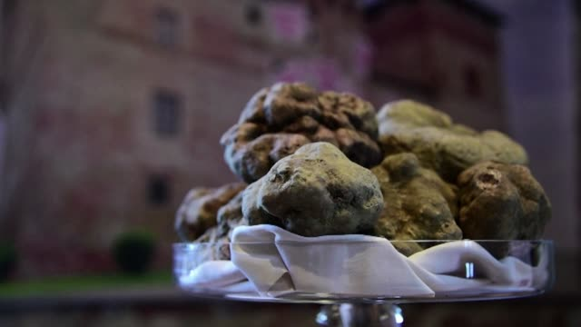 A twin white truffle weighing one kilogram is sold for 100000 euros to a buyer from Hong Kong at the World Alba White Truffles Auction in Grinzane...