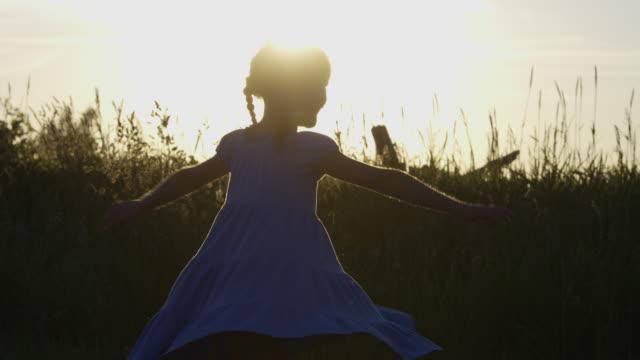 vídeos de stock e filmes b-roll de retorcer ao pôr do sol - cerca