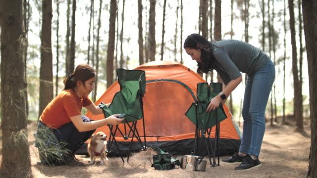 vídeos de stock e filmes b-roll de two asian woman friend prepare camping outdoor in forest - outdoor pursuit