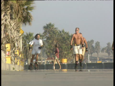 stockvideo's en b-roll-footage met two bare chested men in shorts and sunglasses skate towards camera alongside woman in shorts and t shirt through heat haze along venice beach promenade. palm trees and other people in background - gymbroek