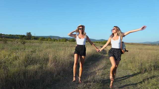 two beautiful sisters cheerfully jumping up in field - twin stock videos & royalty-free footage