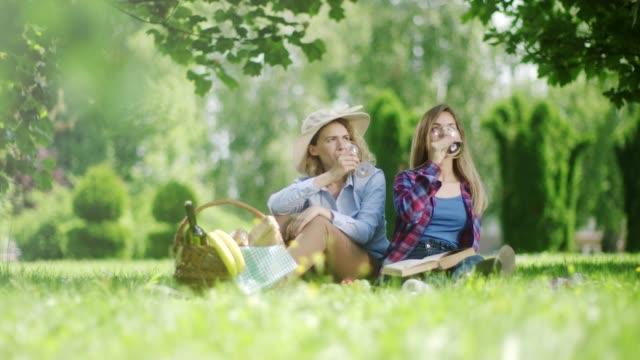 自然の中でピクニックに赤ワインを飲む 2 つの美しい女性 - ギフトバスケット点の映像素材/bロール