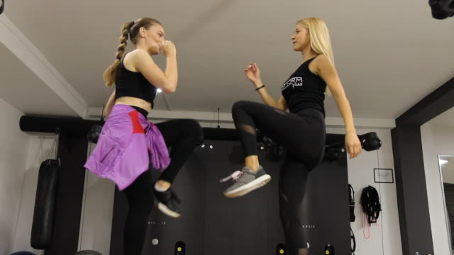 two beautiful woman exercising on boxes at gym - bodyweight training stock videos & royalty-free footage