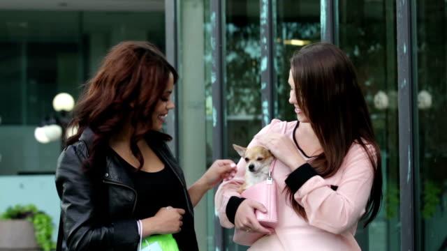 Due belle donne con il cane