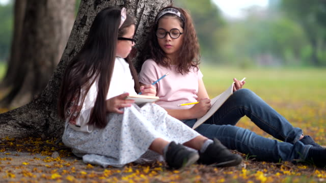 two beautiful young girls with friends take notes to your notes and then playing  in park sunny autumn day, talking and laughing at park - rivista pubblicazione video stock e b–roll