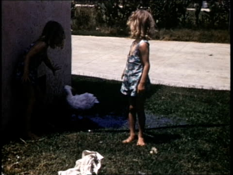 vídeos y material grabado en eventos de stock de two blonde girls play with a duck in a puddle girls playing with duck on july 01 1941 in california - organismo acuático