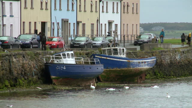 vídeos de stock, filmes e b-roll de ms  two boats in front of row of houses / galway, county galway, ireland - grupo médio de animais
