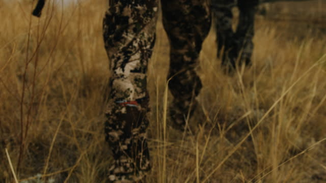 vídeos de stock e filmes b-roll de two bow hunters walk through grass carrying a compound bow, they stop at the top of a large ravine to overlook their hunting ground. the shallow depth of field and slow motion give the shot a feeling of intensity as he walks in full camouflage. - veado