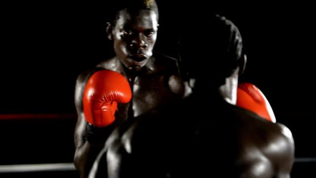 2 つのボクサーに対応 - 殴る点の映像素材/bロール