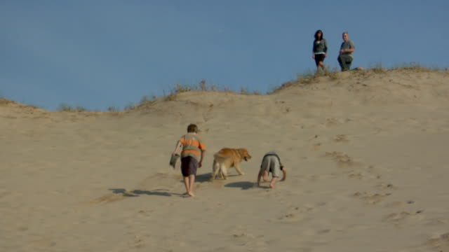 ws, two boys (8-9, 10-11) and dog running up sand dune, parents in background,  provincetown, cape cod, massachusetts, usa - 40 44 years stock videos & royalty-free footage