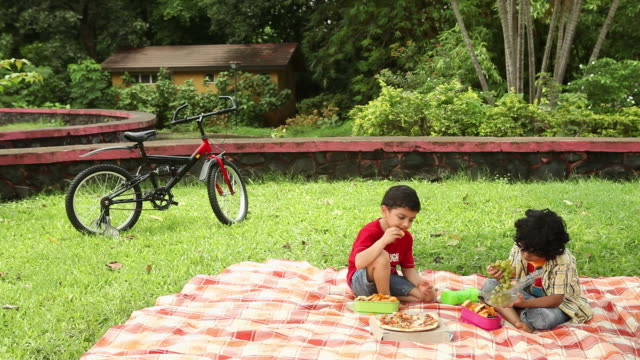 two boys eating fruits in a park  - picnic stock videos & royalty-free footage