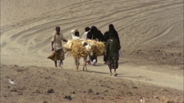 two boys lead a donkey down a road. - yemen stock videos and b-roll footage