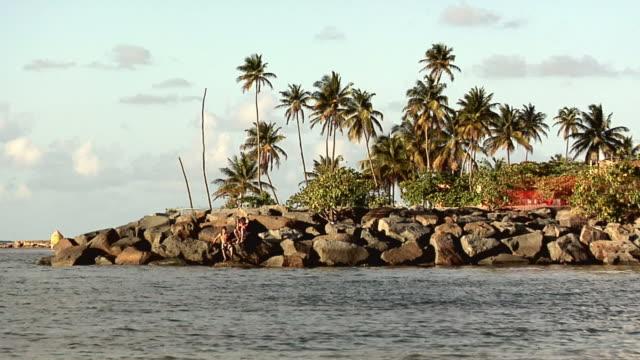 ws two boys on boulders at beach manuel 'nolo' morales at dorado, puerto rico, usa - 水泳パンツ点の映像素材/bロール