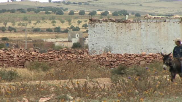 vídeos y material grabado en eventos de stock de ws two boys on donkey on country road, sidi moktar, morocco - encuadre de tres cuartos