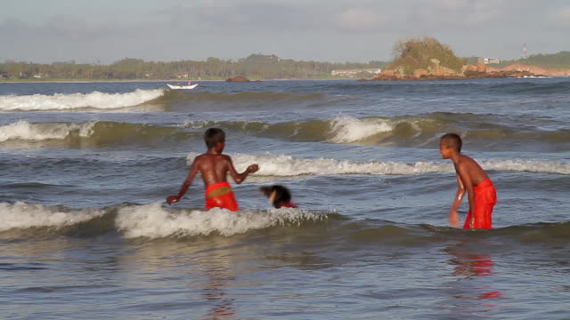 MS Two boys playing with dog in waves at Harbor / Weligama, Southern Province, Sri Lanka