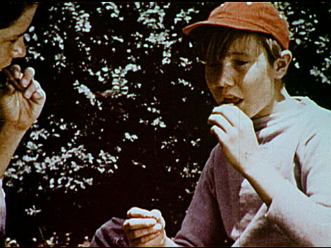 / two boys share a cookie food being wrapped at picnic bottle being corked boy fills water glass - 1951年点の映像素材/bロール