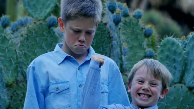 two boys - cute cactus stock videos & royalty-free footage
