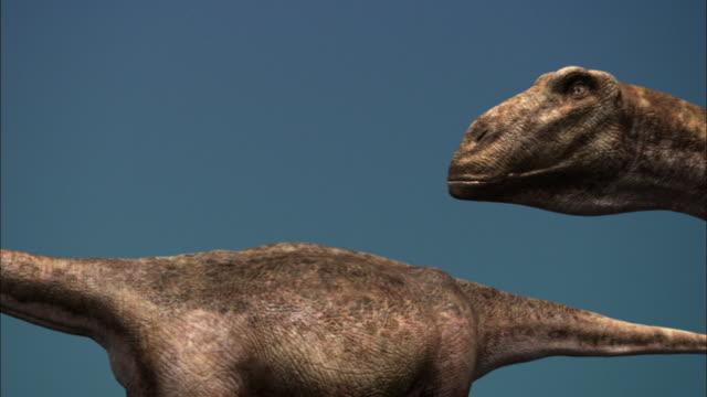 CGI, CU, LA, Two Brontosauruses