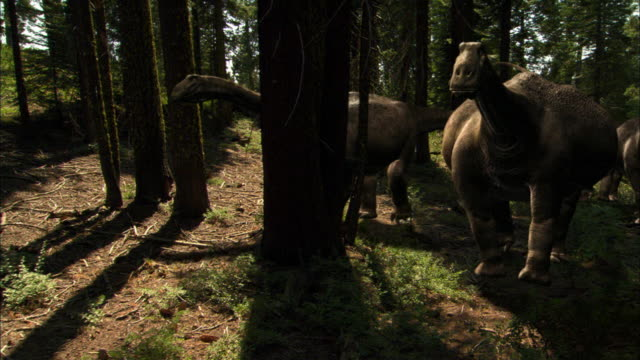 cgi, ms, two brontosauruses walking through forest - paleozoology stock videos and b-roll footage