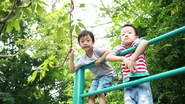 two brothers play in the park - jungle gym stock videos and b-roll footage