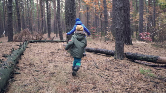 Two brothers playing tag game in forest on autumn day
