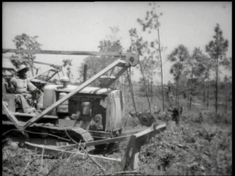 1944 WS Two bulldozers clearing a field / United States