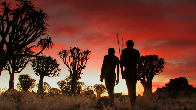 two bushmen - koecherbaumwald_san - indigenous culture stock videos & royalty-free footage