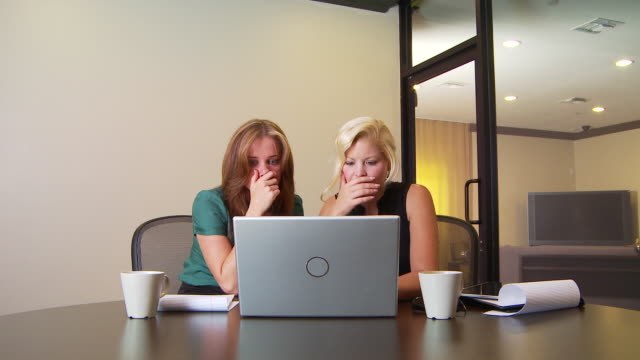 Two businesswomen working on laptop