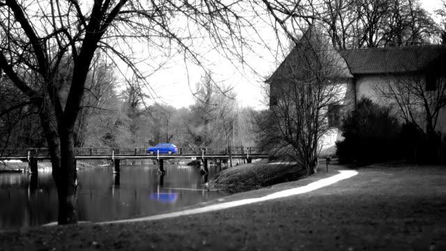due automobili guidano il ponte - colore isolato video stock e b–roll
