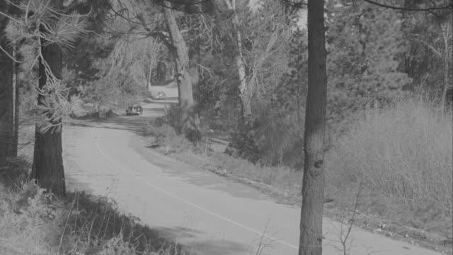 vídeos de stock e filmes b-roll de ms ts pan two cars moving on road in forest - rasto de movimento