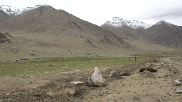 two changpa tribal men riding their horses back to their camp, changtang plateau, ladakh, india; - altopiano video stock e b–roll