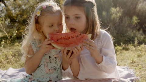 two children eating watermelon - sharing stock videos & royalty-free footage